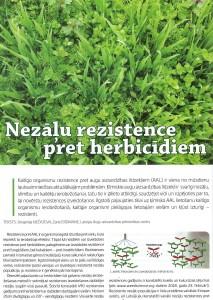 Nezalu_rezistence_1